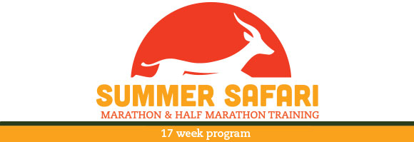 2015 Summer Safari Header